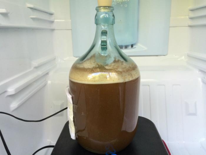 Belgian Pale Ale Fermenting