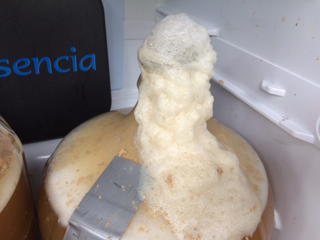 beer coming out of airlock
