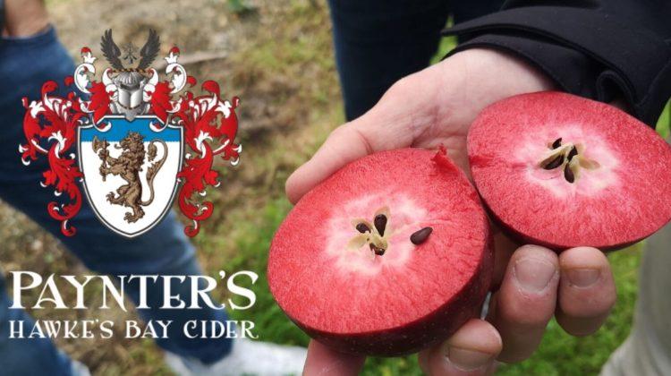 Paynter's Cider